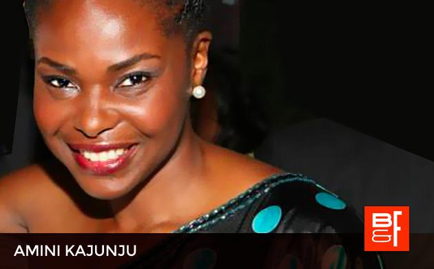 Amini Kanjuju Africa-America Institute